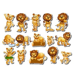 Sticker set of lion family vector