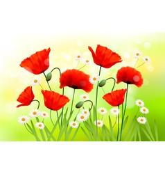 poppy daisy background vector image vector image