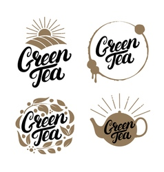 Set of Green Tea hand written lettering logos vector image vector image