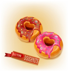 two fried donut glaze and chocolate vector image vector image
