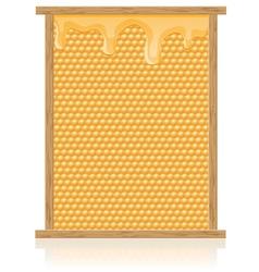 Honey 02 vector