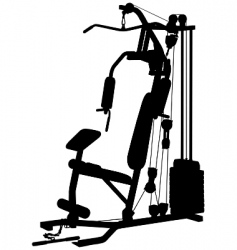 multi gym vector image vector image