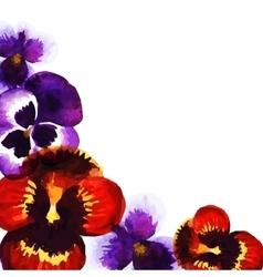 Watercolor pansies vector