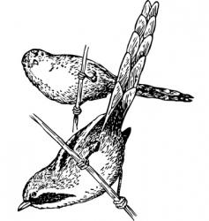 bird panurus biarmicus vector image