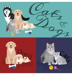 Cat and dog together lying vector