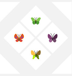Flat butterfly set of moth beauty fly violet vector