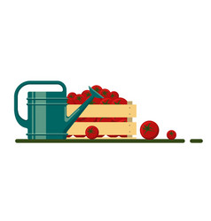 garden watering can and tomato icon collection vector image vector image