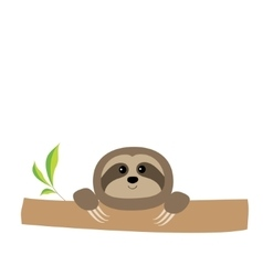 Sloth face and hands cute cartoon character tree vector