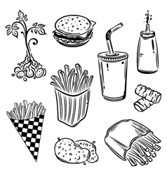 Hamburger potatoes vector image vector image