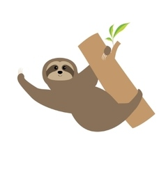 Sloth tree branch cute cartoon character wild vector