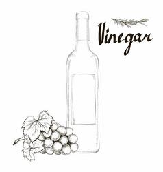 Wine vinegar in the bottle outline vector