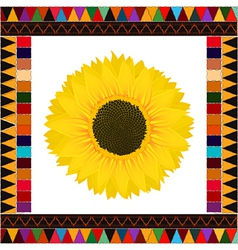 Autumn sunflower background vector