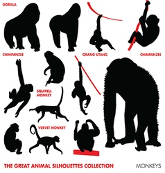 great animal silhouettes collection - monkeys vector image