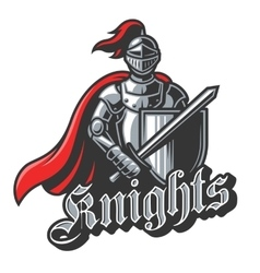 Knight sport logo in color vector