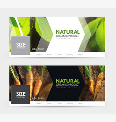 universal template banner for social networks for vector image