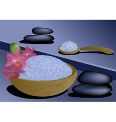 Spa product vector