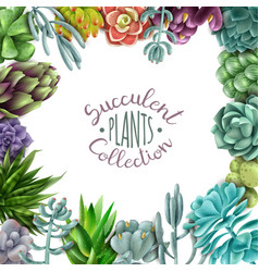 Succulent plants collection vector