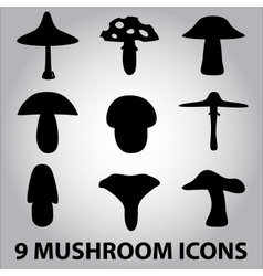 Black symbols of mushroom types eps10 vector