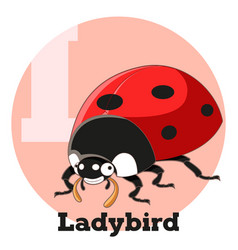 Abc cartoon ladybird vector