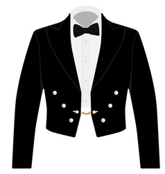 Black suit with bow tie vector