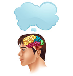 Man with brain diagram and speech bubble vector