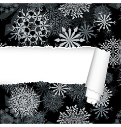 Snowflakes Pattern With Torn Stripe vector image