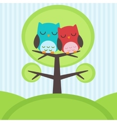 Owls on tree vector