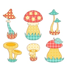 Isolated mushroom patchwork set vector