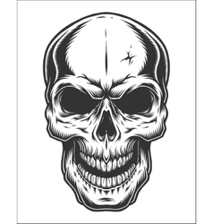 Monochrome of skull vector image