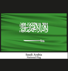 National flag of saudi arabia vector
