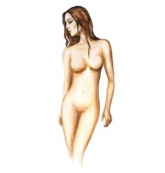 Watercolor woman vector image vector image
