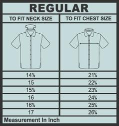 Men shirt regular size vector