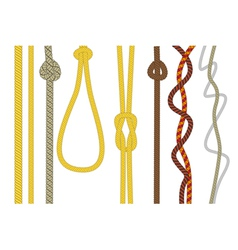 Different size and color rope vector