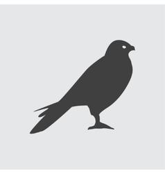 Hawk icon vector