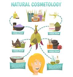Natural cosmetology flowchart vector