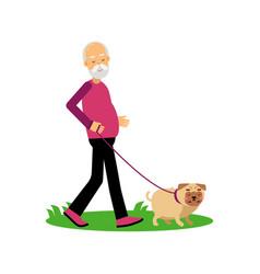 senior man walking with dog elderly people active vector image vector image