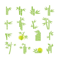 Bamboo symbol icons set vector