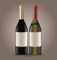 bottle wine drink image vector image