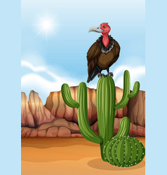 Scene with vulture bird on cactus plant vector