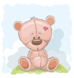 Cute drawn teddy vector