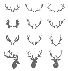 Hand drawn deer antlers vector