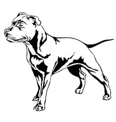 Decorative standing portrait of dog staffordshire vector