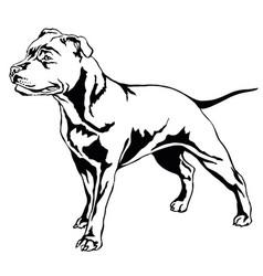 decorative standing portrait of dog staffordshire vector image