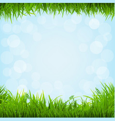 grass borders vector image vector image