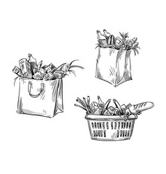 Shopping bags and basket drawing vector