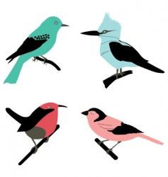 different birds vector image