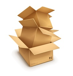 Empty open cardboard boxes vector image