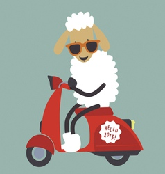 Holiday card with cute sheep with bike vector