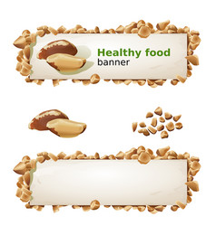 Set banners with brazilian nut and ground nuts vector