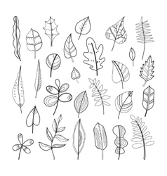 Set of doodle leaves plants for coloring book vector image